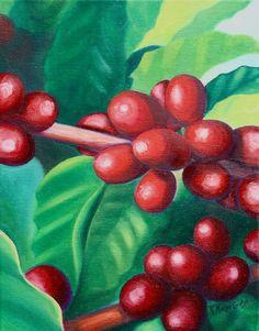 """Kona #Coffee Berries"" Yummy!  Fine #art #Hawaii #painting , oil on canvas     www.GalleryKristine.com"