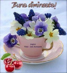 Good Morning, Tea Cups, Tableware, Motto, Bonjour, Italy, Buen Dia, Dinnerware, Tablewares
