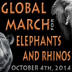 Will you march? The Global march for Elephants and Rhinos will take place on Oct. 4th, 2014 in cities across the world. Please join us. These animals need you.
