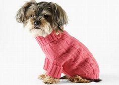 roupas de inverno para cachorro 3
