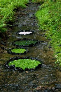 ~~ nature art