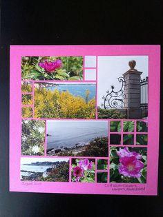 Flowers in Newport, RI | Flickr - Photo Sharing!