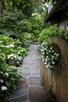 shady white garden