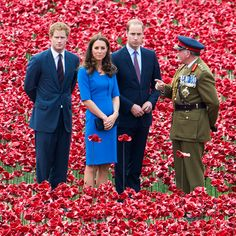 Prince Harry, Prince William and Duchess Kate take in the sights at the Tower of London's Blood Swept Lands and Seas of Red installation on Tuesday in London, where 888,246 poppies were planted, each representing a British military death from World War I.