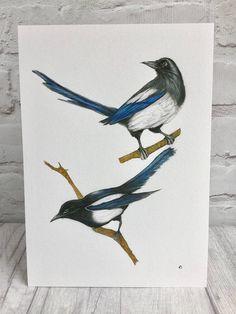 Magpies fine art print by Norfolk artist Teresa Staniforth #magpies #fineart #print