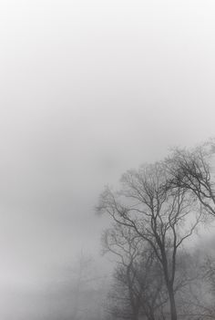Bristol Fog on Cereal Magazine