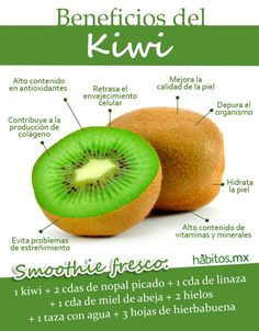Kiwi - Another! Healthy Fruits, Healthy Drinks, Healthy Tips, Health And Nutrition, Health And Wellness, Calendula Benefits, Food Facts, Natural Medicine, Natural Cures