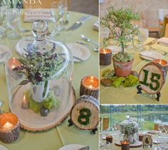 Organic Elegance Herbal centerpieces (Fleur Chicago) DIY table numbers, Photo by Amanda Megan Miller Photography