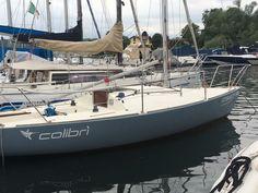 Small Sailboats, Vehicles, Sailboats, Car, Vehicle, Tools