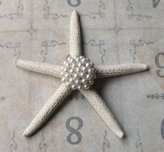 Vintage Pearl Earring Jeweled Starfish, Beach Wedding Table Decor, Beach Cottage Coastal Style, Inspirational Bridal Gift