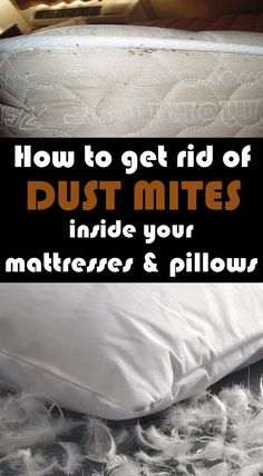 How To Get Rid Of Dust Mites Inside Your Mattresses And Pillows - Health Remedies Deep Cleaning Tips, House Cleaning Tips, Cleaning Solutions, Spring Cleaning, Cleaning Hacks, Cleaning Closet, Cleaning Recipes, Clean Burnt Pots, Dust Mite Allergy