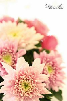 Fresh Flowers For Wedding And Wedding Decorations Glitz Wedding, Wedding Flowers, Fresh Flowers, Art Photography, Wedding Decorations, Garden, Plants, Fine Art Photography, Garten