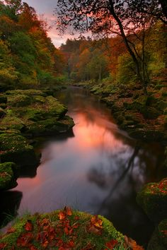 Slow stream in autumn - photo by Wolfy