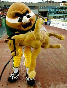 Punter, Edmonton Eskimos mascot. Debuted in 2004.
