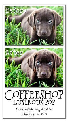The CoffeeShop Blog: CoffeeShop Lustrous Pop PS/PSE Action!