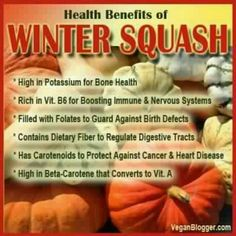 winter squash more squashes winter squash winter squash