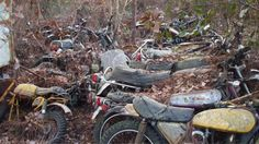 abandoned motorcycle - Google Search