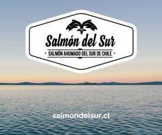Salmón ahumado en caliente de Salmón del Sur.Todo el sabor del sur directamente a tu mesa. salmondelsur.cl Salmon, Santiago, Smoked Salmon, Atlantic Salmon