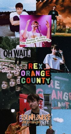Rex orange county wallpaper aesthetic vintage film Bedroom Wall Collage, Photo Wall Collage, Picture Wall, Orange Aesthetic, Aesthetic Indie, Aesthetic Vintage, Aesthetic Pastel Wallpaper, Aesthetic Wallpapers, Music Collage
