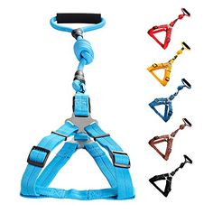 awesome Vicform Dog Harness & Leash Set: for Walking, Jogging, and Training your Pet- Heavy Duty Poly/Nylon Straps/ Anti-Twist Leash on Spin Clasp- Durable Braid Leash / Comfort Foam Handle/ Bright Colors