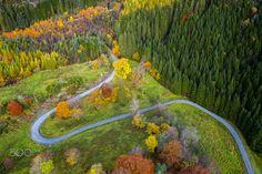 Winding Autumn Road by Eirik Sørstrømmen / Winding Road, Norway, Vineyard, Landscapes, Autumn, Outdoor, Paisajes, Outdoors, Fall