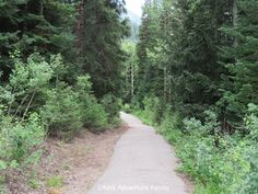 Snowbird Barrier Free Trail