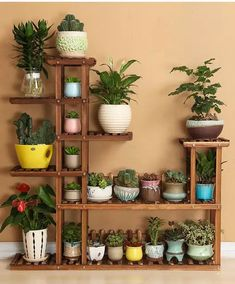 30 Best Patio Garden Design Ideas and Low Maintenance – Small Balcony Decor Ideas 53 The Best Cinder Block Garden Design Ideas In Your Frontyard 35 Classic Mexican Planters Ideas Perfect to your interior Very Beautiful Diy Wooden Pallets Shelf Fresh Ide Indoor Plant Shelves, Indoor Plants, Shelves For Plants, Tiered Plant Stand Indoor, Indoor Cactus, Indoor Outdoor, Diy Garden, Home And Garden, Garden Gate