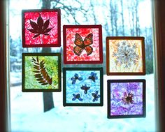 Gorgeous! Rainbow Stained Glass Suncatchers made with dried flowers, crayons, wax paper and popsicle sticks.