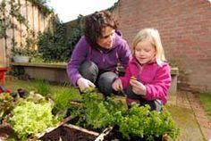 Smullen uit eigen tuin. Half april start het zaaiseizoen voor veel groenten. Met veel van de gewassen uit onderstaande lijst kan ook al net wat eerder begonnen worden.