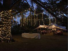 Fairy Lights - Trunk Lights