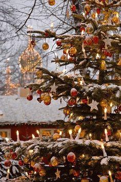 Beautiful outdoor Christmas tree at Tivoli Gardens, Copenhagen, Denmark Noel Christmas, Merry Little Christmas, Country Christmas, Outdoor Christmas, Winter Christmas, Christmas Lights, Vintage Christmas, Christmas Decorations, Tree Decorations