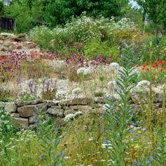 10 Tipps Für Mehr Nützliche Insekten Im Garten
