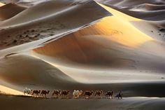 Photograph Ge Bi Desert by Adam C. Wong on 500px