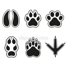 Traces of animals on a white background — Stock Illustration Kindergarten Activities, Activities For Kids, Crafts For Kids, Animal Stencil, Bear Silhouette, Animal Tracks, Free Vector Illustration, Lessons For Kids, Forest Animals