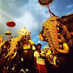 http://www.visiit.com/india-tours/kerala-tour-packages.html  kerala tour packages