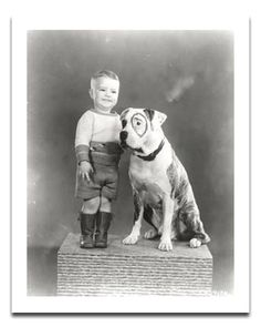 Petey from the Little Rascals, yep, was a Pit Bull. Pit 's not the 's the people Pitbull Terrier, Pitbull Facts, Pitbull Pictures, Dog Shaming, Pit Bull Love, Family Dogs, Pit Bulls, Dog Photos, Animal Photography