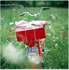 Happiness is a red bicycle in a field of poppies.