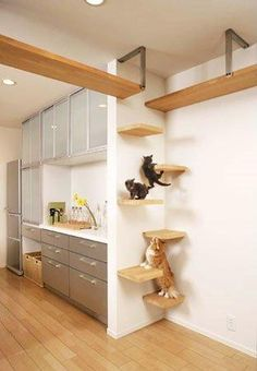 Image result for diy cat furniture