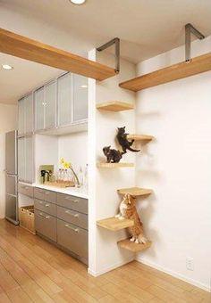 Image result for diy cat furniture