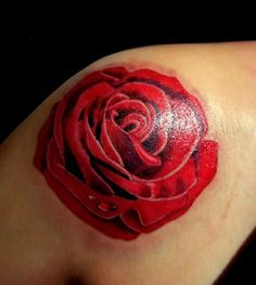 Fire And Ice Rose Tattoo | www.galleryhip.com - The Hippest Pics