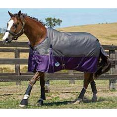 Original 1200 Denier Standard Neck Medium Turnout Horse Blanket Slate/Purple - Item # 28970
