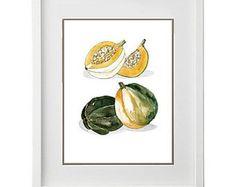 "Squash Gourd 9x12"" in White Floating Frame - Marcella Kriebel Art and Illustration   #marcellaartandillustration #foodart #watercolor #illustration"