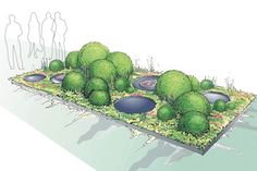 Chelsea Flower Show 2013: the story of the First Touch garden - Telegraph