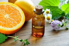 Understanding Essential Oils with Nance Pantano  Conscious Shift Online Magazine