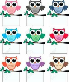 a big cute colourful owl family Kindergarten Classroom Decor, Owl Theme Classroom, Classroom Birthday, Classroom Board, Classroom Labels, Classroom Rules, In Kindergarten, Class Decoration, School Decorations