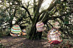 Tropicalia By Moroso | Hub Furniture Lighting Living