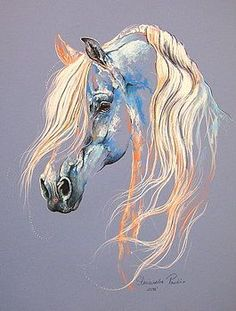 Arabian horse by Paulina Stasikowska