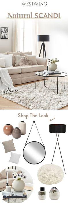 Clean Master Carpet