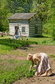 An interpreter harvests onions at the Fossebrekke farn in the Norwegian area of Old World Wisconsin.