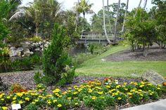 Tour the gardens at the Mounts Botanical Garden.